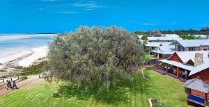 Luxury Beachfront Accommodation Dunsborough