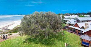 Luxury Beachfront Accommodation Dunsborough